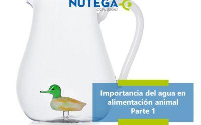 Importancia del agua en nutrición animal. Parte 1