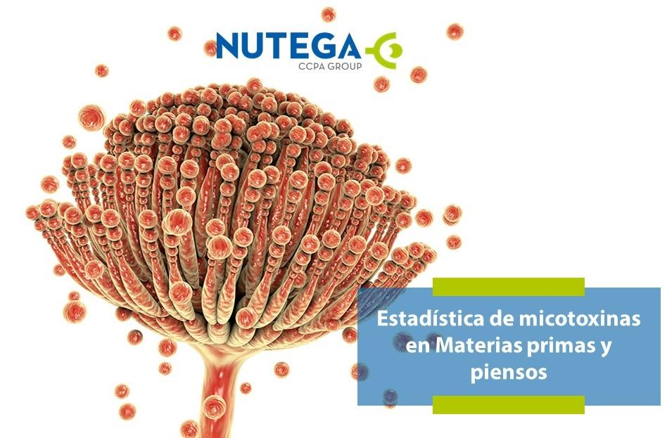 Estadística de micotoxinas en materias primas y piensos