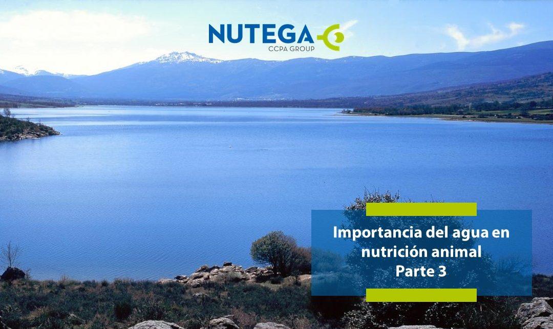 Importancia del agua en nutrición animal. Parte 3