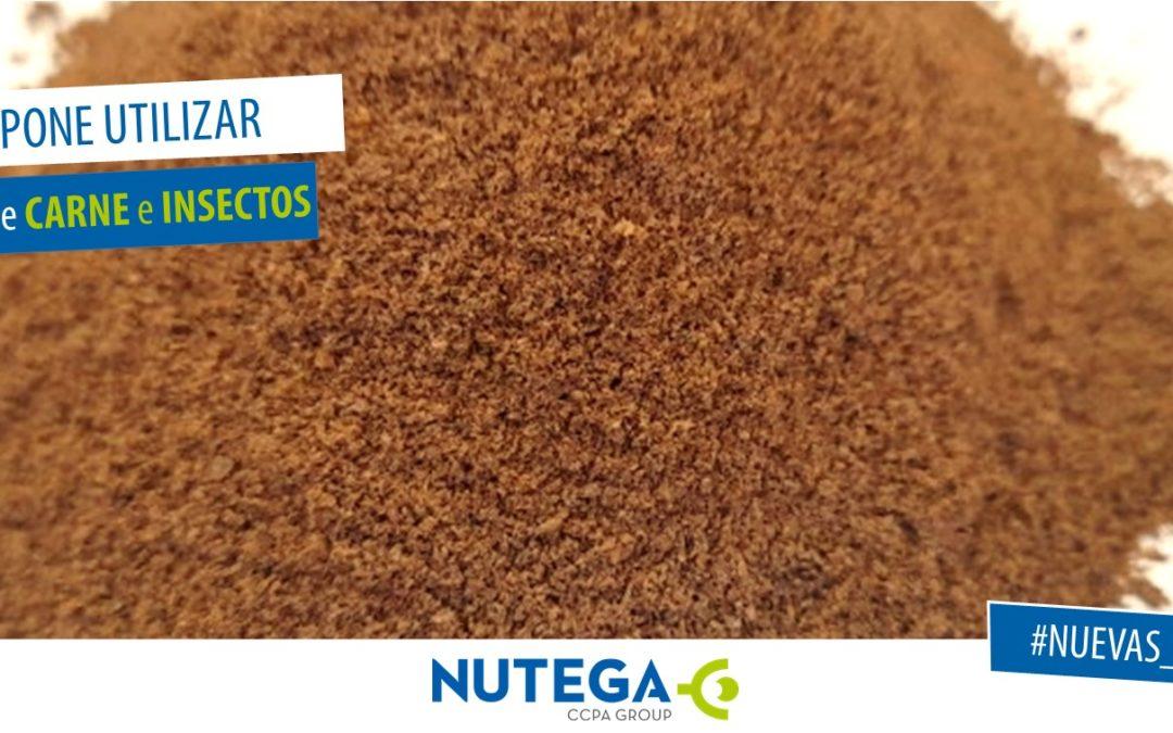 ¿qué supone el nuevo reglamento sobre harina de carne e insectos?